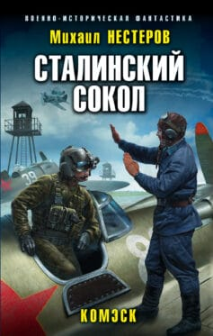 «Сталинский сокол. Комэск» Михаил Альбертович Нестеров