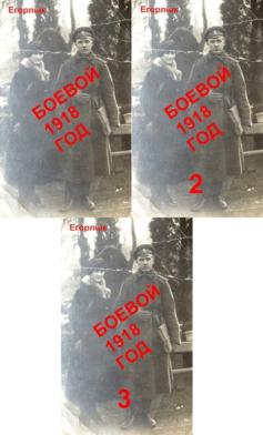 Серия книг «Боевой 1918 год»